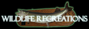 Wildlife Recreations logo